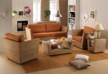 Les meilleurs matériaux pour les meubles: un aperçu des types, spécifications et commentaires