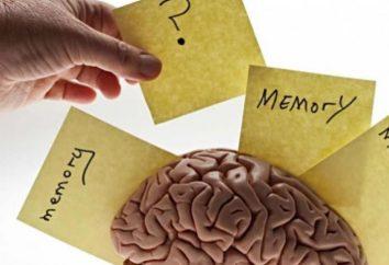 6 zabawnych sposobów na wzmocnienie pamięci