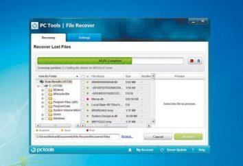 So entfernen Sie ein Flash-Dateien wiederhergestellt? Erfahren Sie, wie man richtig die wiederhergestellten Dateien auf einem Flash-Laufwerk entfernen.