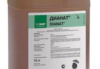 """Herbizid """"Dianat"""": Beschreibung, Gebrauchsanweisungen"""