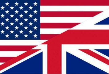 English – la lingua United States Stato?