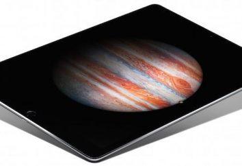 iPad Pro: descrição geral e funcionalidades