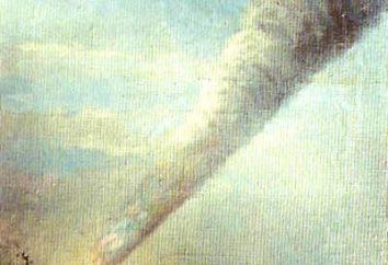 Catastrophe de l'espace – météorite Sikhote-Alin