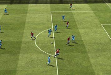 E1103 – um bug no FIFA 2013