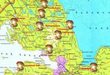 miejsc grzyb, Leningrad Region. Łóżka Mapa grzyb