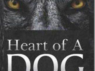 Mikhail Bulgakov. « Coeur de chien. » Résumé et sens caché
