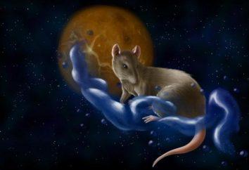 Wschodnim patronatem jest Rat. Taurus urodził się w tym roku, co on lubi?