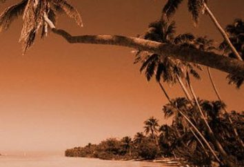 North Goa: praias ao ritmo do reggae