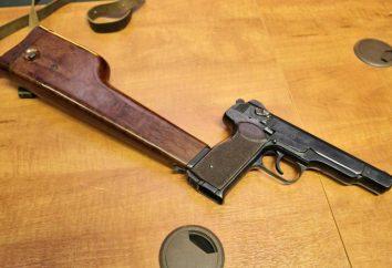 Stechkin: caratteristiche, i tipi e le recensioni arma