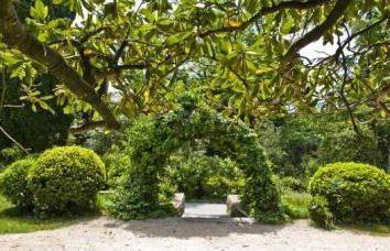 O Miskhorsky Park é uma pérola exótica da Criméia