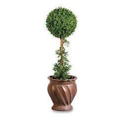 Topiary – Albero di felicità è fatto con le proprie mani
