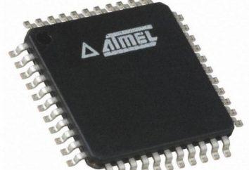 Programowanie mikrokontrolerów dla początkujących: proste i niedrogie
