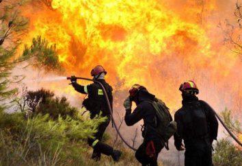 Loi fédérale « sur le feu » du 21 Décembre 1994. dispositions générales