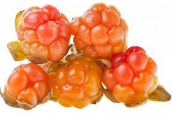 Cloudberry oddawania moczu. przepis przygotowanie i wykorzystanie jagód w domowej kuchni.