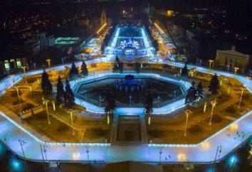 Dónde ir en Moscú en patines en cualquier momento del día?