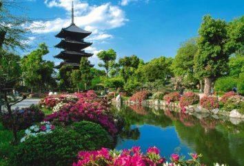 Obszar Japonii w kontekście geograficznym