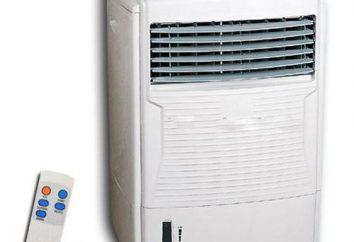 Was ist besser – die Klimaanlage oder Klimaanlage? Was ist besser – mobile Klimaanlage, Boden oder Split-System?