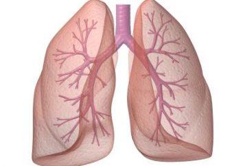 """Formación respiratoria """"Samozdrav"""": instrucción, opiniones y precios"""
