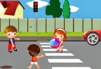 Rätsel auf Verkehrsregeln für Kinder: Wir studieren die Regeln der Straße in einer Spielform