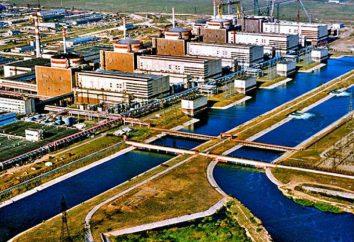 Kernenergie: die größte russische NPP