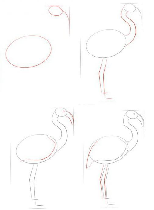 comment dessiner un flamant rose miracle rose de la nature guide tape. Black Bedroom Furniture Sets. Home Design Ideas