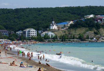 Das Dorf Novomikhailovsky (Tuapse Bezirk) – Urlaub für jeden Geschmack