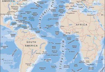 courant froid de l'océan Atlantique – est quoi? Description des courants froids de l'Atlantique