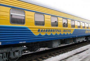 Kaliningrad Ferrovie: stazione, l'estensione di confine