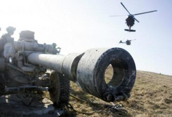 Artillerie-Aufklärung. Batteriemanagement und Artillerieaufklärungs