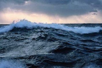 El océano más grande del mundo – el Océano Pacífico. Por qué se llama y cómo es interesante?