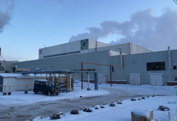 granito Ural: Producción, productos, opiniones