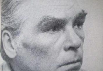Sergey Polikarpow – Biografia i kariera