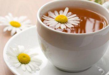 """Herbata dla dzieci """"kosz babci"""": Opinie"""