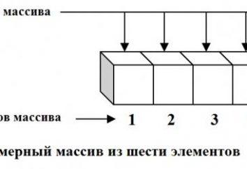 Zorganizowany typ – tablica jednowymiarowa