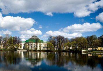 Ogród Tavrichesky w Petersburgu: godziny pracy, adres, zdjęcia i opinie turystów