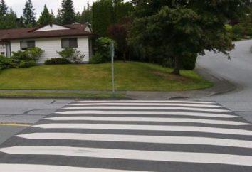 Podstawowe zasady postępowania i obowiązki pieszego na drodze. Prawa i obowiązki pieszych