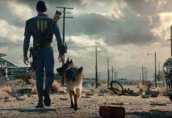 jogo de computador Fallout 4 – Códigos para recursos: concreto, madeira, têxteis, aço