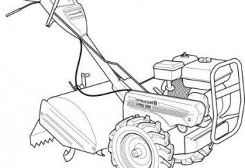 Silniki do glebogryzarki – co wybrać?