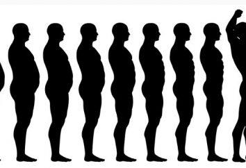 Goma de mascar para bajar de peso: revisiones. Goma de mascar única para la pérdida de peso Goma de la dieta