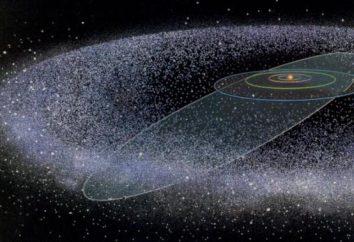 Obiekty Trans-Neptunian: pojęcie, rodzaje