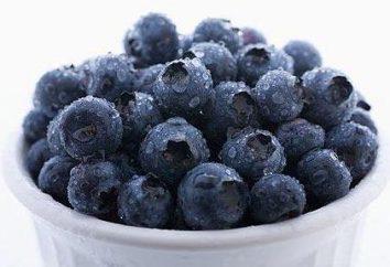 Nützliche Eigenschaften und Kalorienheidelbeere