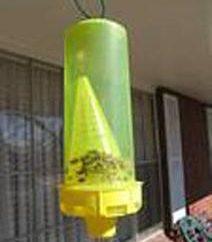 Fallen für die Bienen. Informationen für Anfänger Imker