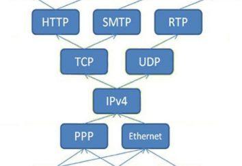 Protocollo di rete – che cosa è questo? protocolli di rete di base