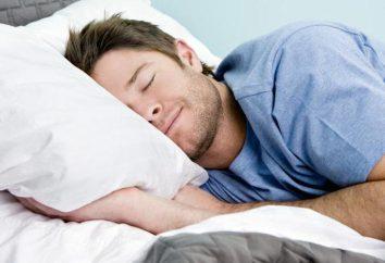 Las siestas: daño o beneficio. sueño durante el día para bajar de peso