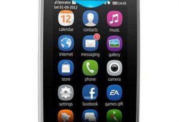 Nokia Asha 309: specyfikacje i recenzje