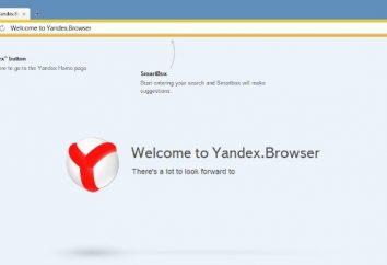 """Cómo cambiar el fondo """"Yandex"""". Descripción general del examinador"""