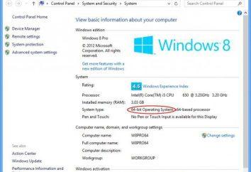 Informationen über das System in Windows: wie man schaut und warum es benötigt wird?