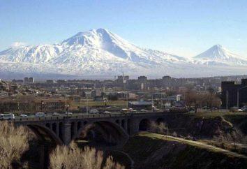 """Coñac """"Ararat"""" 5 estrellas revisión, cómo distinguir una foto falsa"""