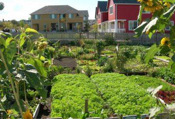Asociación de jardinero. Ley de empresas de jardinería