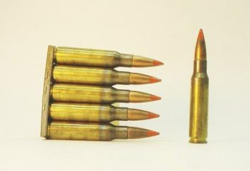 Tracer kula: cel, strukturę i funkcje